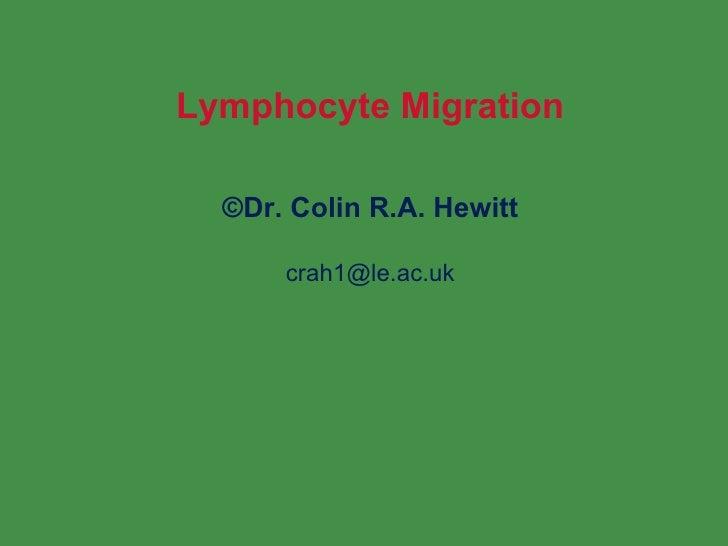 Lymphocyte Migration