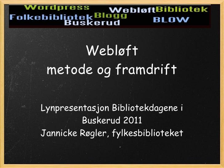 Lynpresentasjon om Webløft i Buskerud