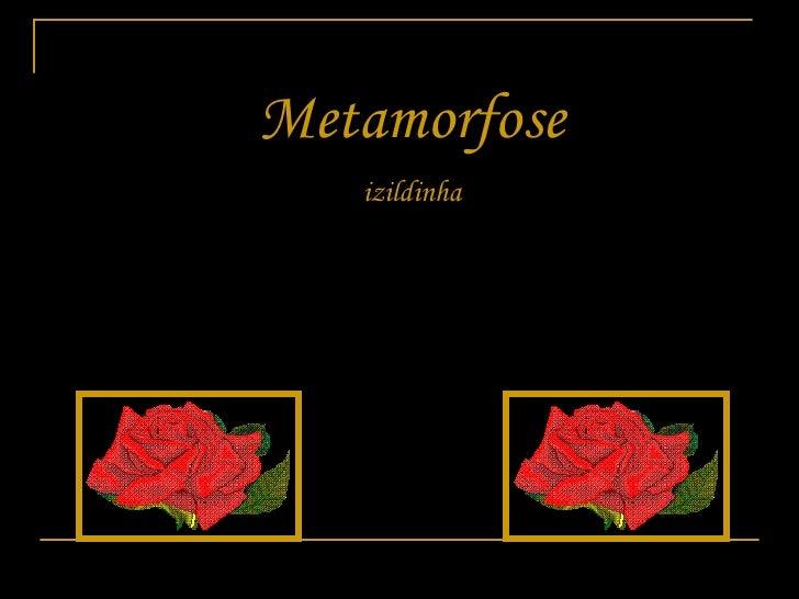 Metamorfose izildinha