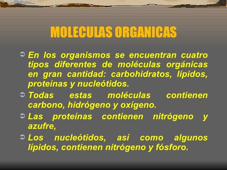 MOLECULAS ORGANICAS <ul><li>En los organismos se encuentran cuatro tipos diferentes de moléculas orgánicas en gran cantida...