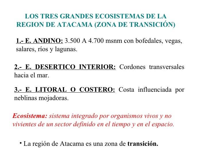 LOS TRES GRANDES ECOSISTEMAS DE LA REGION DE ATACAMA (ZONA DE TRANSICIÓN) 2.- E. DESERTICO INTERIOR:  Cordones transversal...