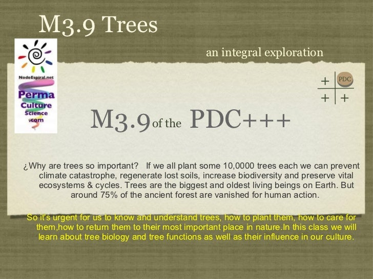 M3.9  PDC+++ <ul><li>¿Why are trees so important?  If we all plant some 10,0000 trees each we can prevent climate catastro...