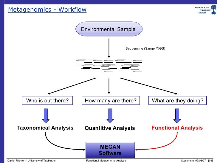 how to read functional analysis