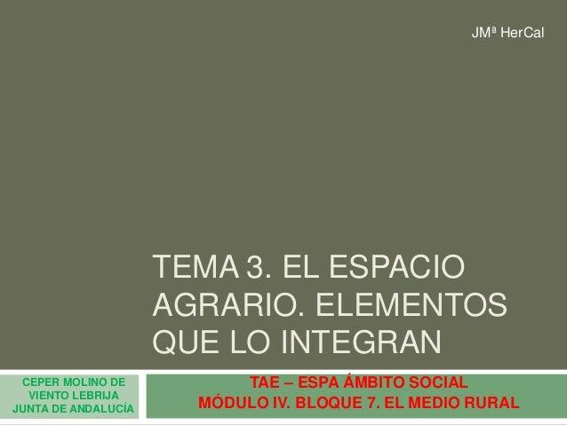TEMA 3. EL ESPACIO AGRARIO. ELEMENTOS QUE LO INTEGRAN TAE – ESPA ÁMBITO SOCIAL MÓDULO IV. BLOQUE 7. EL MEDIO RURAL CEPER M...
