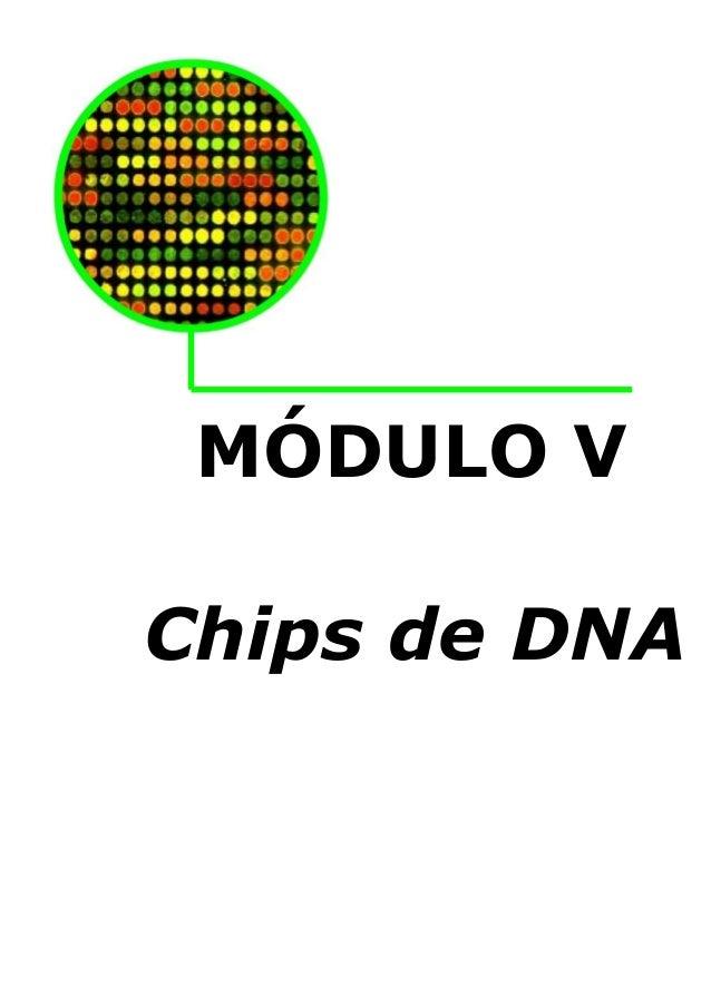 MÓDULO V Chips de DNA