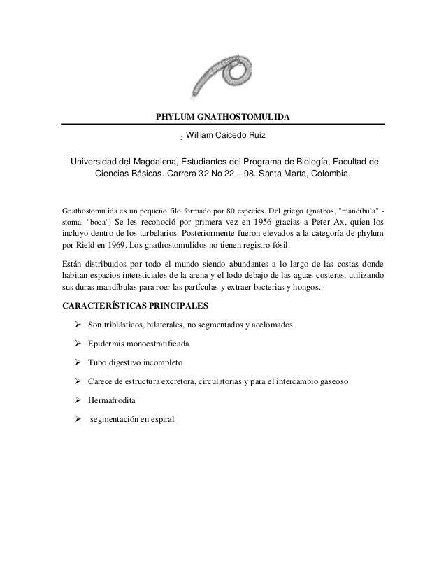Resumen   gnathostomulida