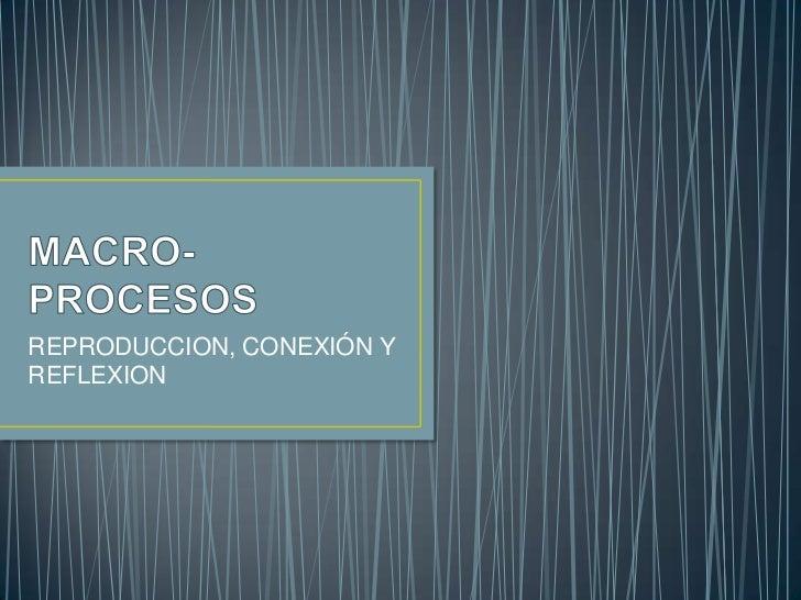 MACRO-PROCESOS<br />REPRODUCCION, CONEXIÓN Y REFLEXION<br />