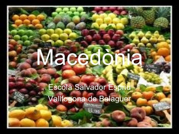 Macedònia Escola Salvador Espriu Vallfogona de Balaguer