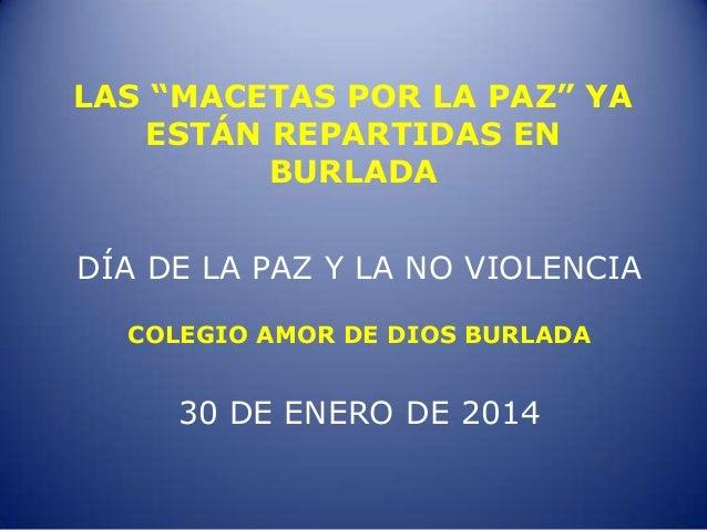 """LAS """"MACETAS POR LA PAZ"""" YA ESTÁN REPARTIDAS EN BURLADA  DÍA DE LA PAZ Y LA NO VIOLENCIA COLEGIO AMOR DE DIOS BURLADA  30 ..."""