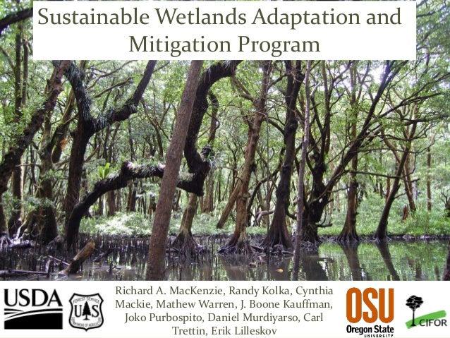 Pacific Southwest Research Station Sustainable Wetlands Adaptation and Mitigation Program Richard A. MacKenzie, Randy Kolk...