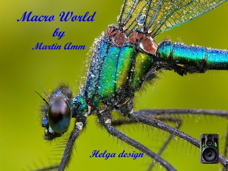 Macro World   by Martin Amm Helga design