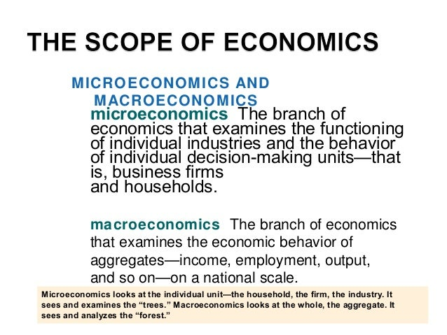 microeconomics The branch of economics that examines the functioning of individual industries and the behavior of individu...