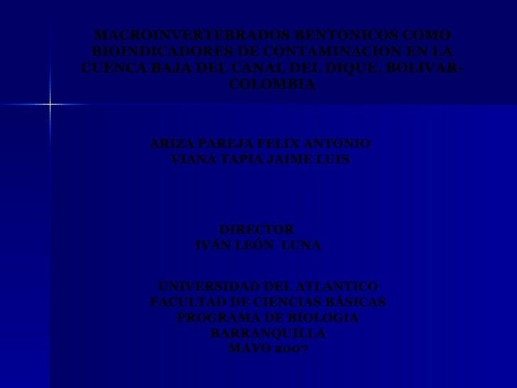 Macroinvertebrados Bentonicos Como Bioindicadores De Contami[1]