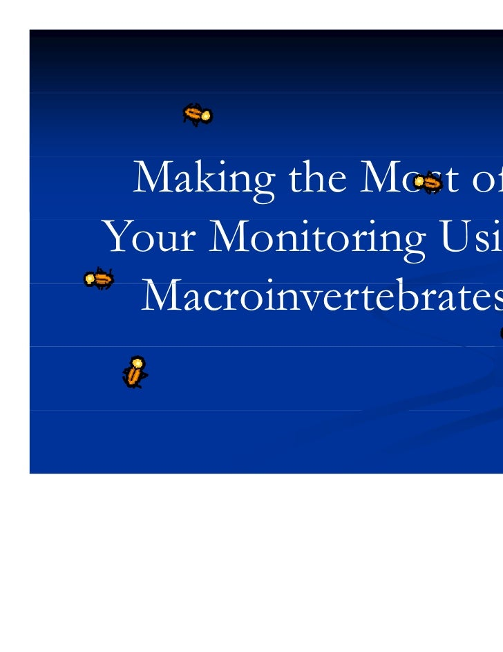 Macroinvertebrate powerpoint