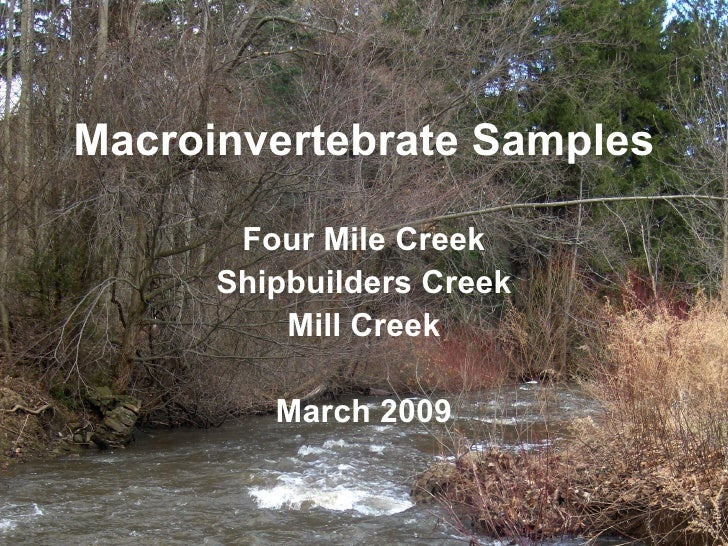 Four Mile Creek Shipbuilders Creek Mill Creek March 2009 Macroinvertebrate Samples