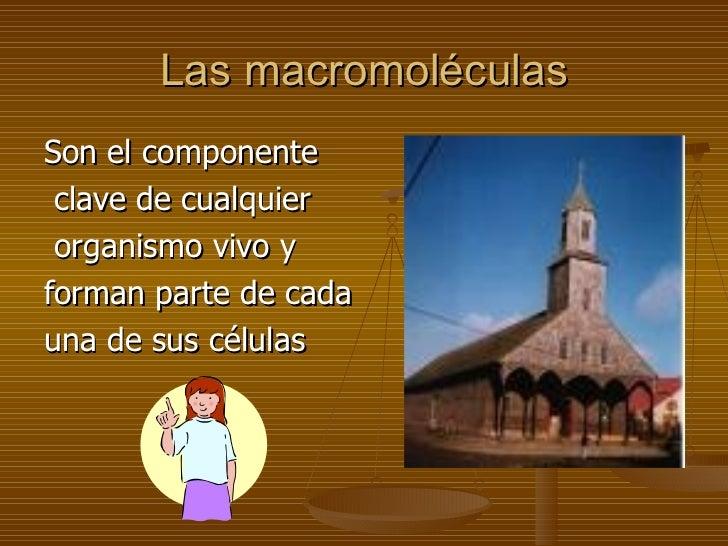 Macromoleculas biologicas