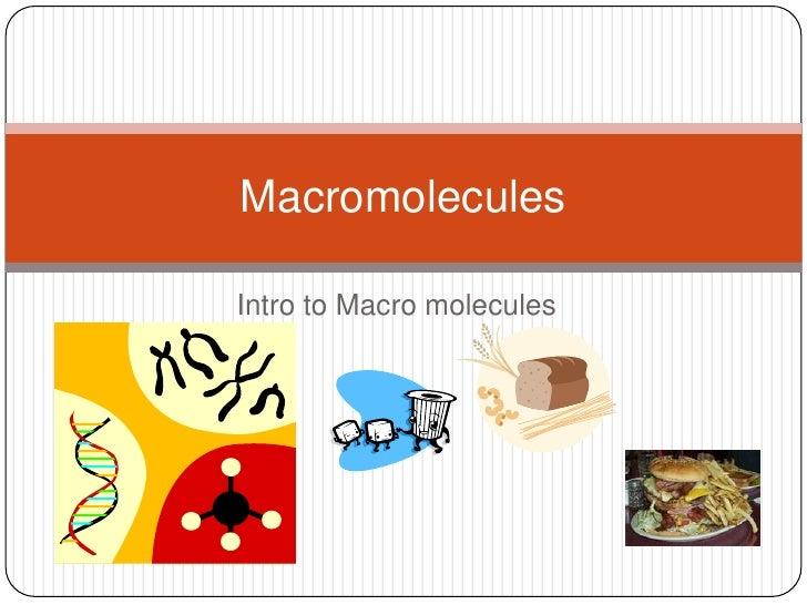 Macromolecule intro