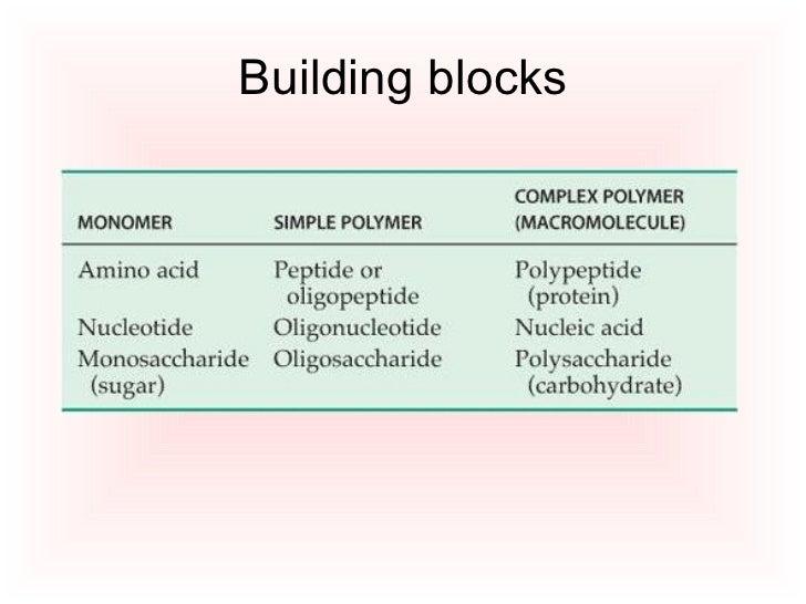 Building Block Of Carbs