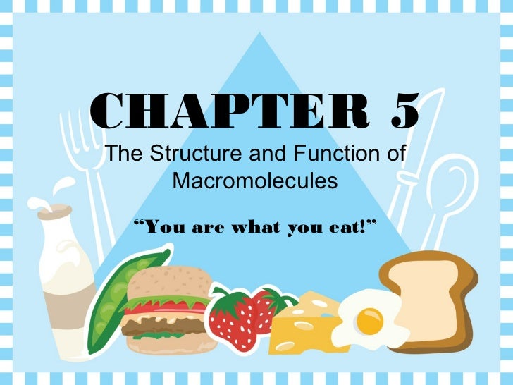 """CHAPTER 5The Structure and Function of      Macromolecules  """"You are what you eat!"""""""