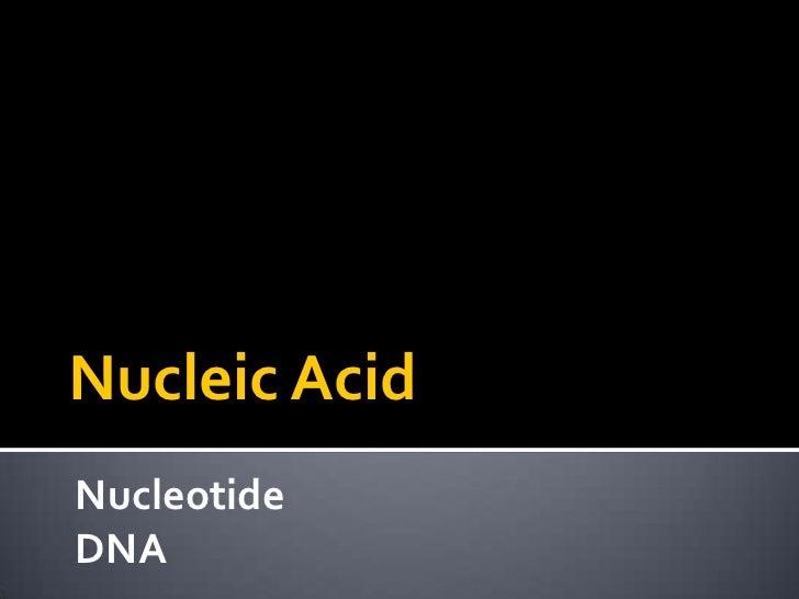 Macro mols   nucleic acids