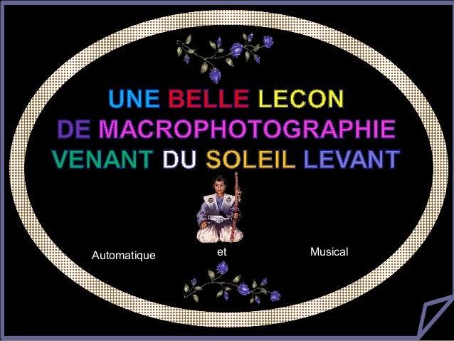 美丽的微距摄影              微距摄影Automatique     et      Musical