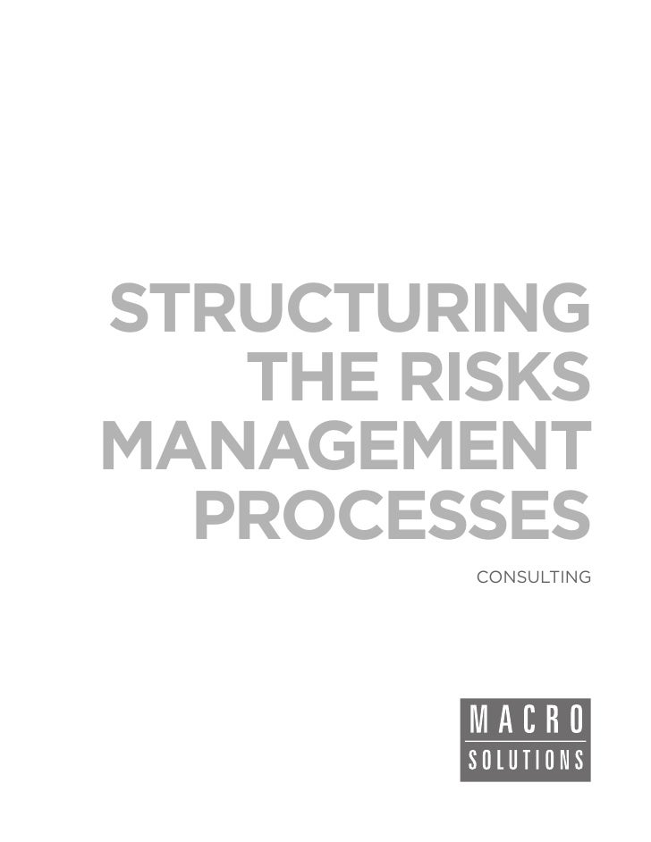 STRUCTURING   THE RISKSMANAGEMENT  PROCESSES         CONSULTING