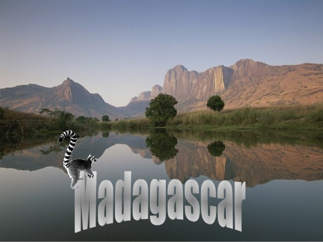 Lêmures - naturais de Madagascar