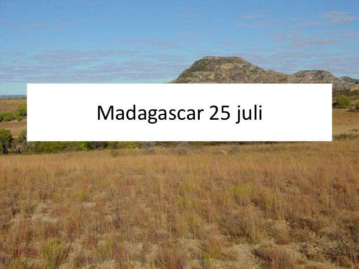 Madagascar 25 juli<br />