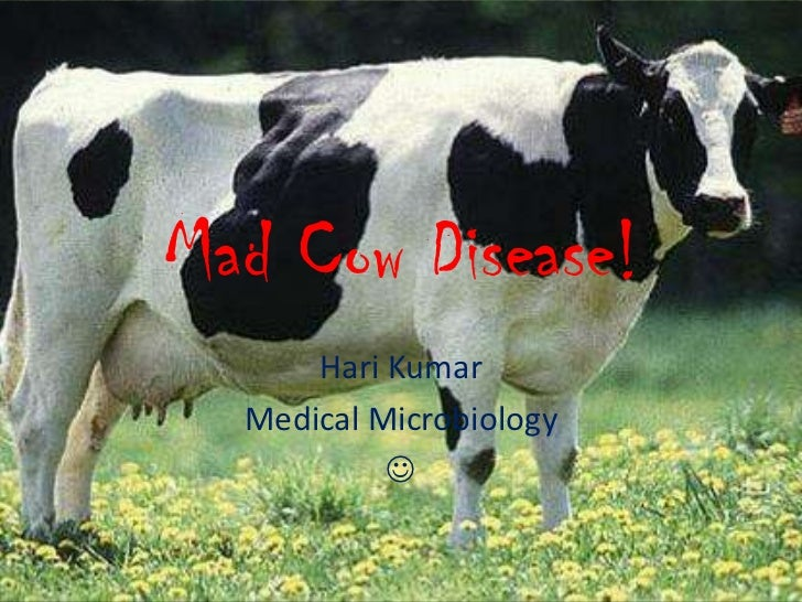 Mad Cow Disease!      Hari Kumar  Medical Microbiology           
