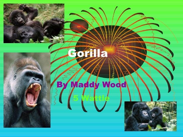 Gorilla By Maddy Wood 5 Wattle
