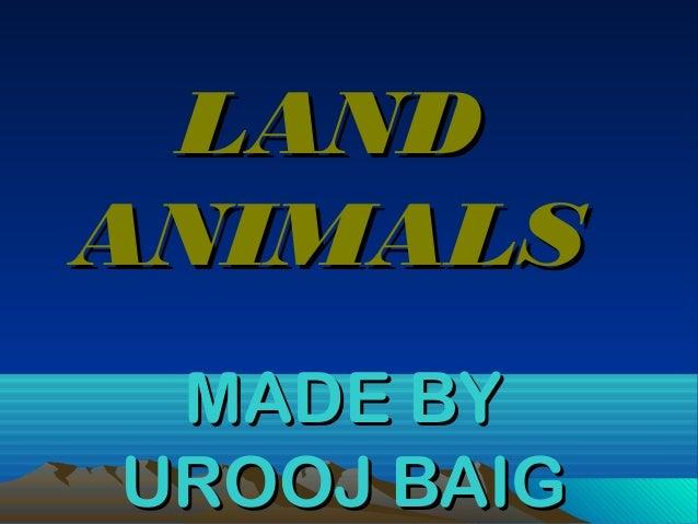LAND ANIMALS MADE BY UROOJ BAIG