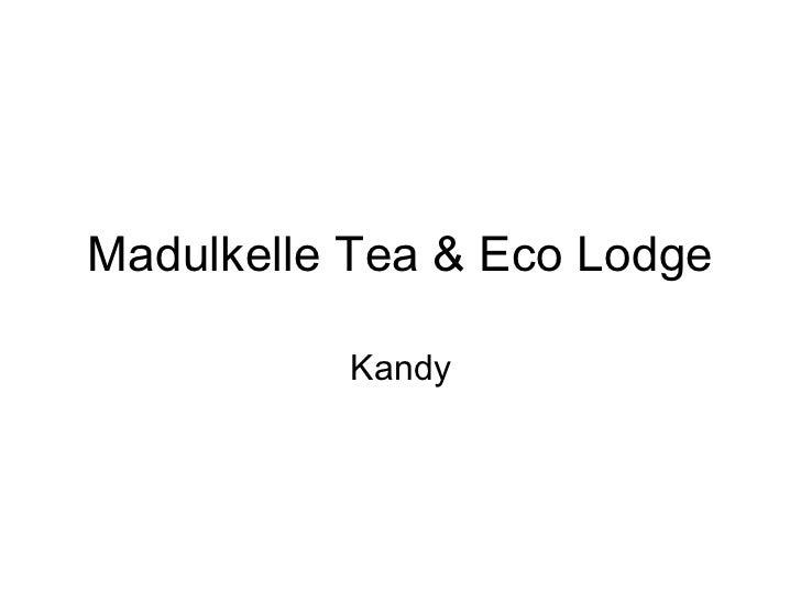 Madulkelle Tea & Eco Lodge          Kandy