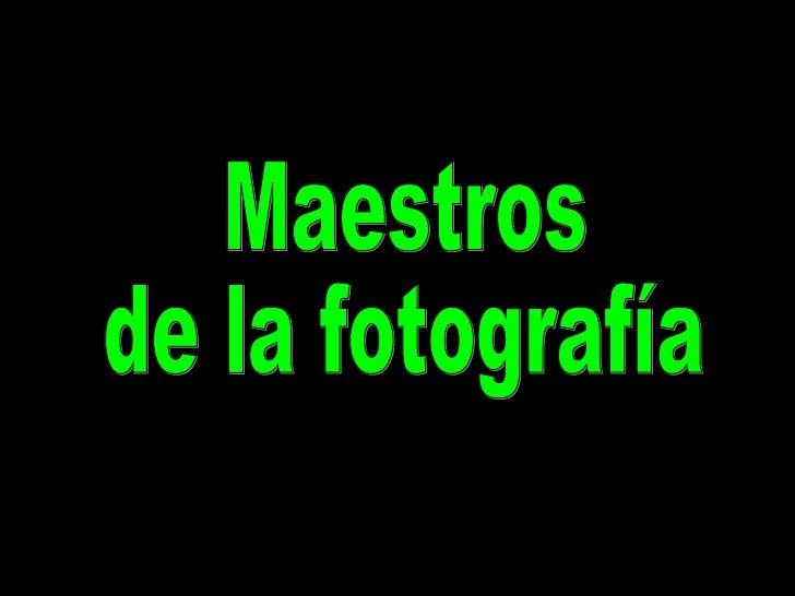 Maestros De La Fotografia Tim Flach