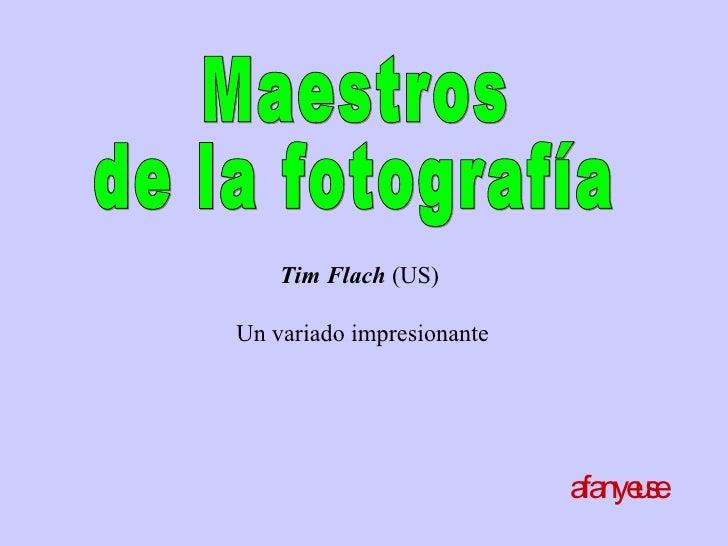 Maestros de la fotografía afanyeuse Tim Flach  (US)  U n variado impresionante