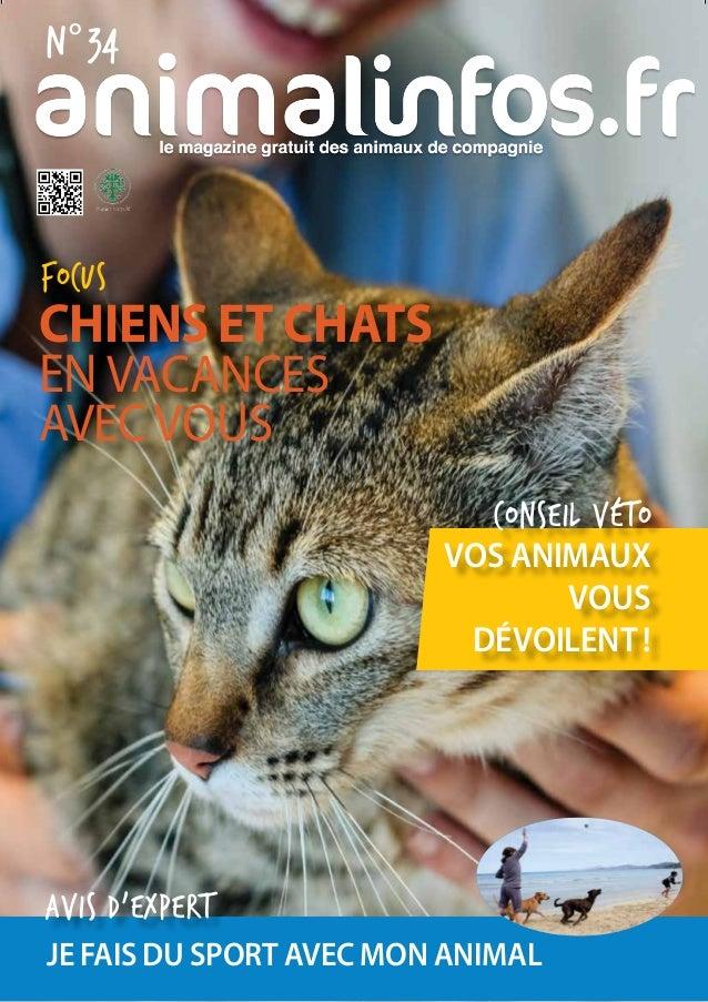 Focus conseil véto Chiens et Chats en vacances avecvous vos animaux vous dévoilent ! n° 34 je fais du sport avec mon anima...