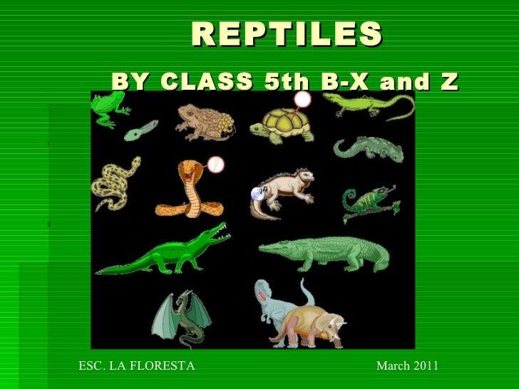REPTILES   BY CLASS 5th B-X and Z   ESC. LA FLORESTA  March 2011