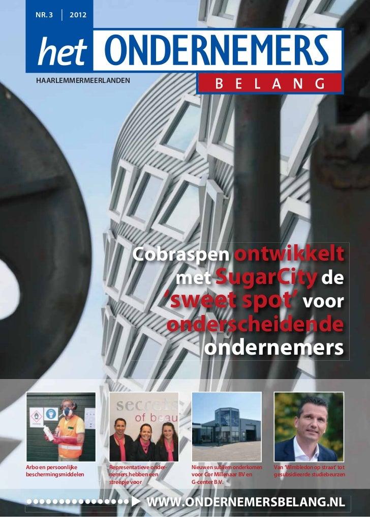 Magazine Het Ondernemersbelang Haarlemmermeerlanden 0312