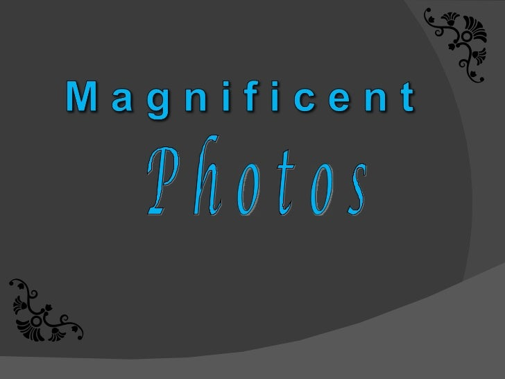 Magnificent photos