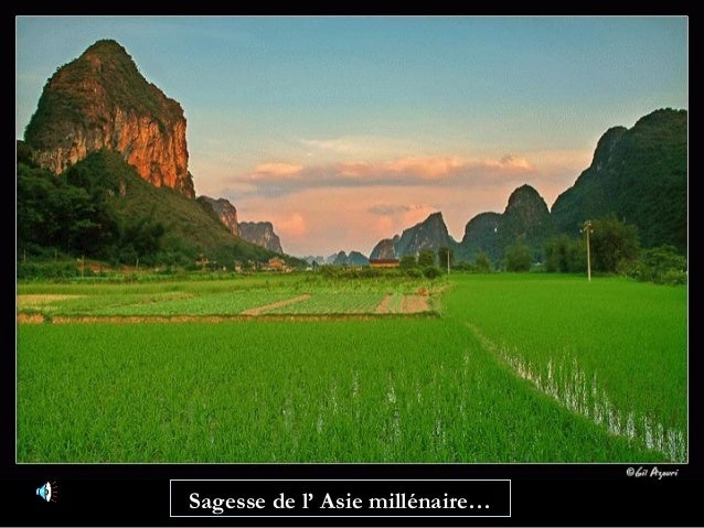 Sagesse de l' Asie millénaire…