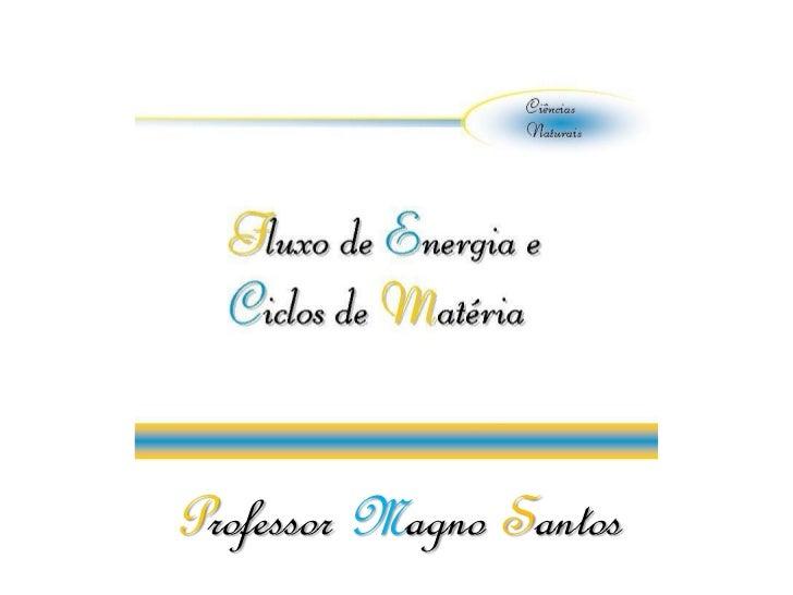 Professor Magno Santos