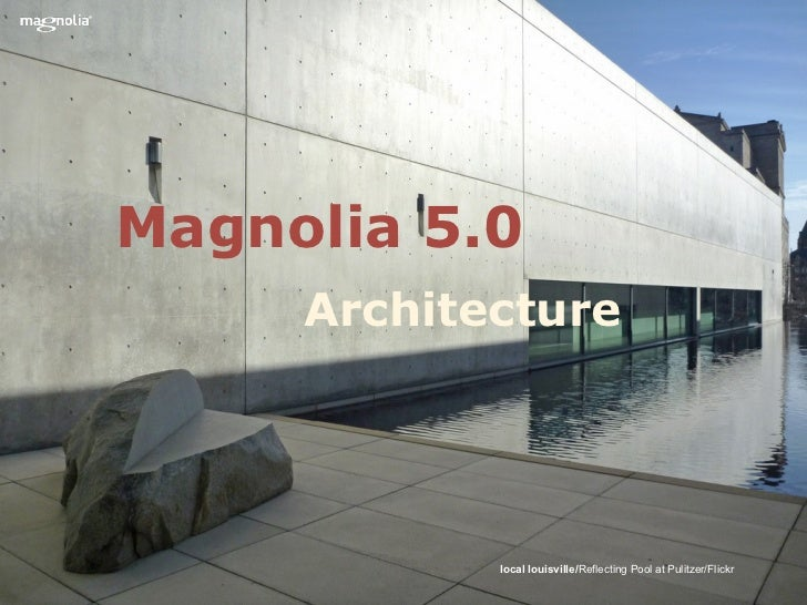 Magnolia 5.0     Architecture            local louisville/Reflecting Pool at Pulitzer/Flickr