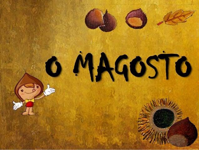 O MAGOSTO