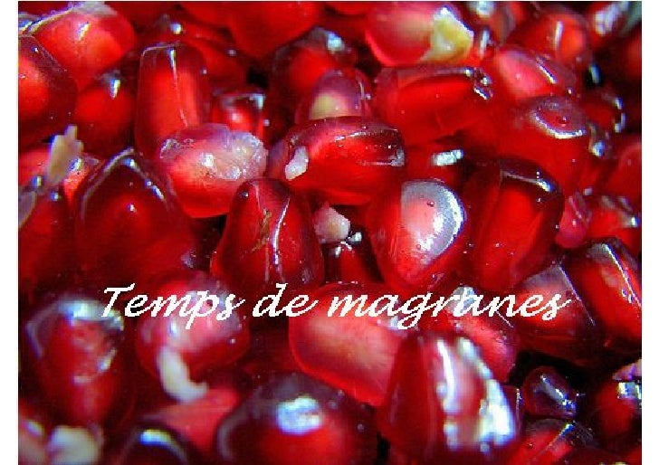 Magranes
