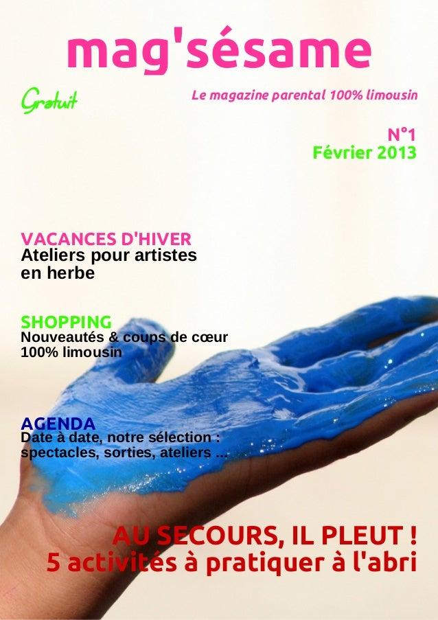 Mag'sésame n°1 février 2013