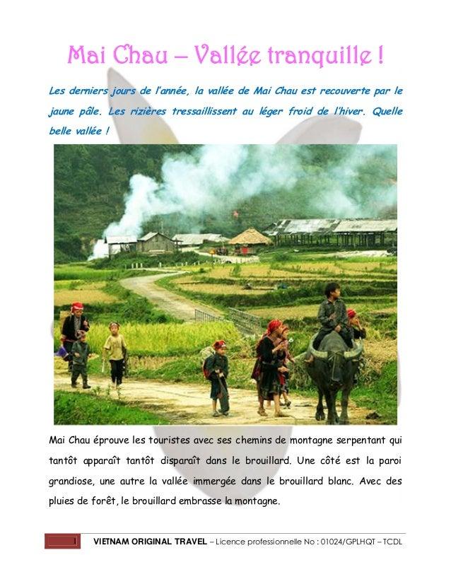 Mai Chau – Vallée tranquille ! Les derniers jours de l'année, la vallée de Mai Chau est recouverte par le jaune pâle. Les ...