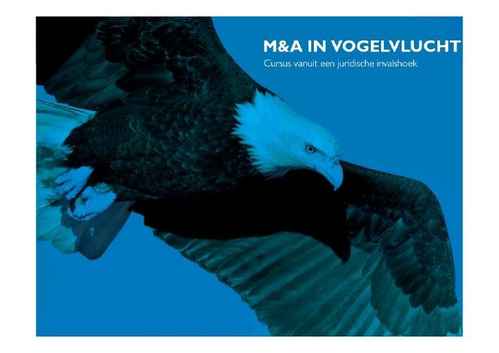 M&A in vogelvlucht   1