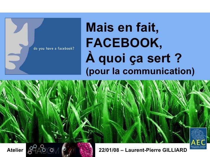 Atelier 22/01/08 – Laurent-Pierre GILLIARD Mais en fait, FACEBOOK, À quoi ça sert ? (pour la communication)