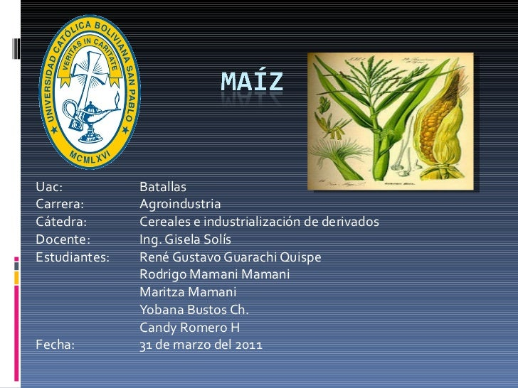 Uac:  Batallas Carrera: Agroindustria Cátedra:  Cereales e industrialización de derivados Docente:  Ing. Gisela Solís Estu...