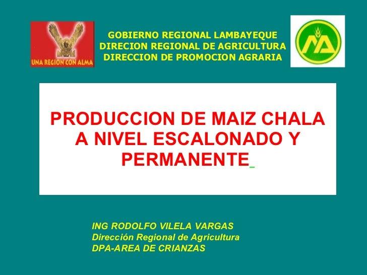 PRODUCCION DE MAIZ CHALA A NIVEL ESCALONADO Y PERMANENTE   ING RODOLFO VILELA VARGAS Dirección Regional de Agricultura   D...