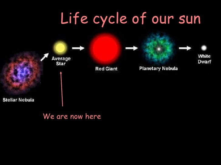 life without sun Yes we can survive without the sun, but the quality of life without sunshine would  be very  without vitamins a and d, to process calcium in our bodies, we would.